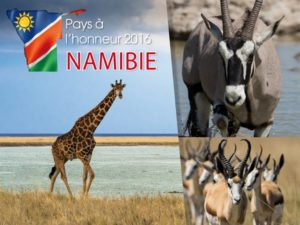 Babi-Babi safari-chasse Namibie Game Fair 2016 - FR