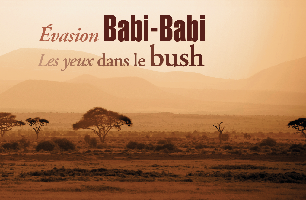 Babi-Babi hunting safari Namibia looking into the bush - EN