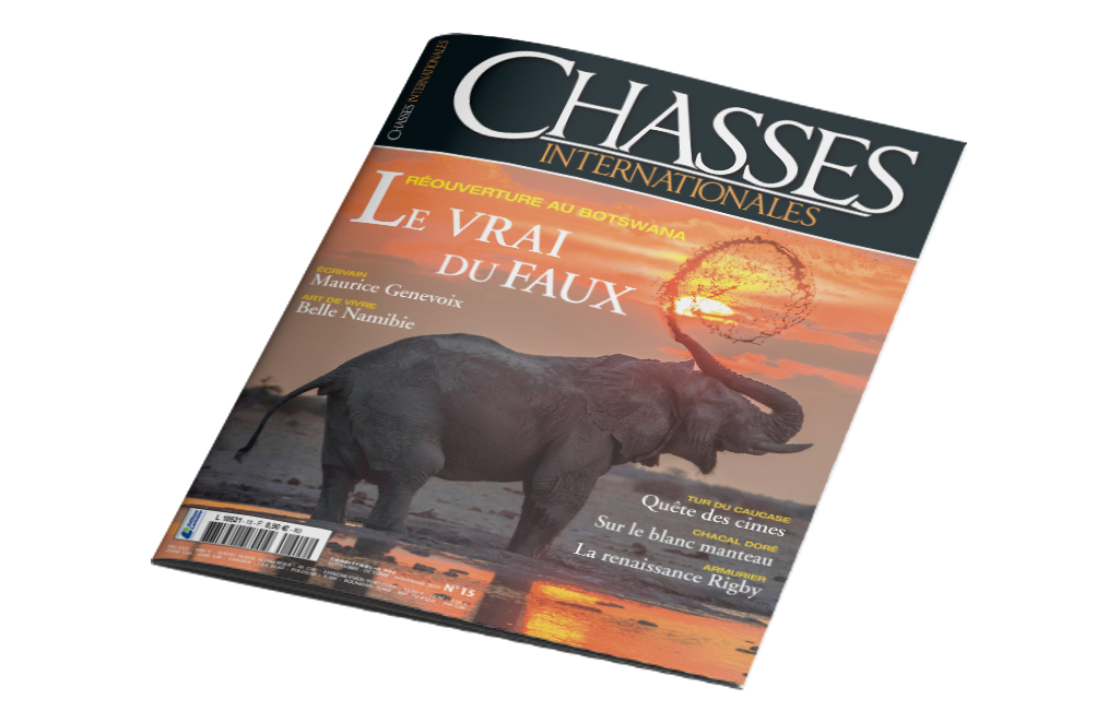 Babi-Babi safari-chasse Namibie Chasses Internationales - FR