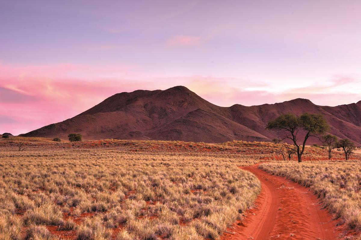 Babi-Babi hunting safari Namibia red sand - EN