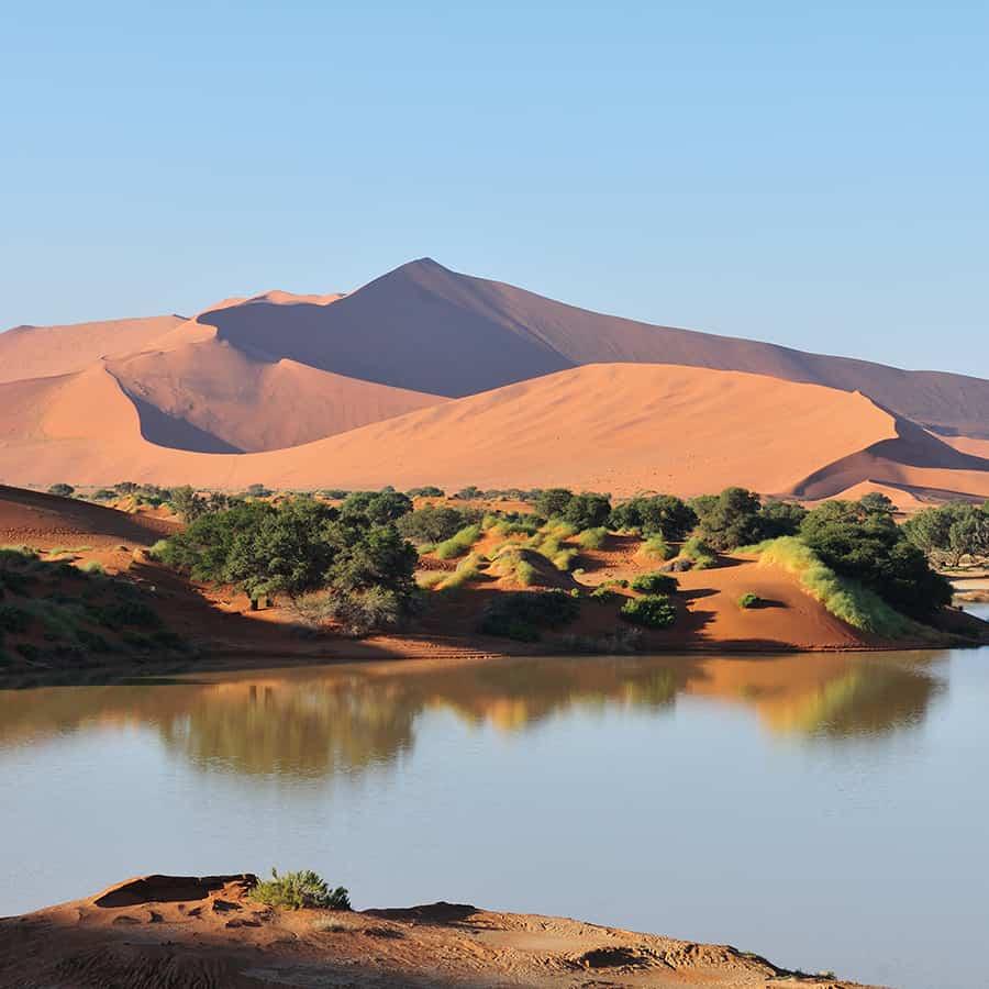 Babi-Babi hunting safari Namibia Namib Desert - EN
